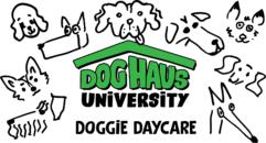 Dog Haus University